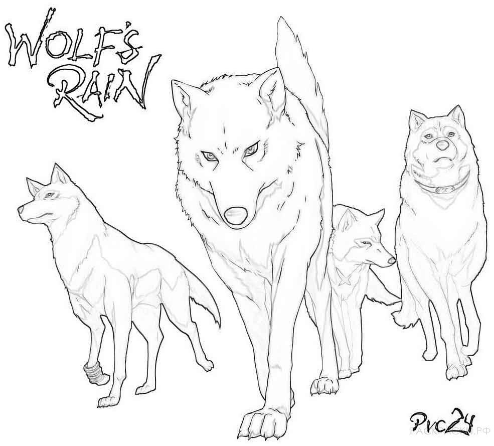 Волк » Раскраски.рф - распечатать картинки раскраски для ...
