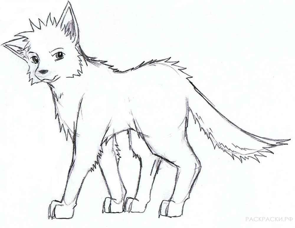 раскраска аниме маленький волчонок раскраски рф