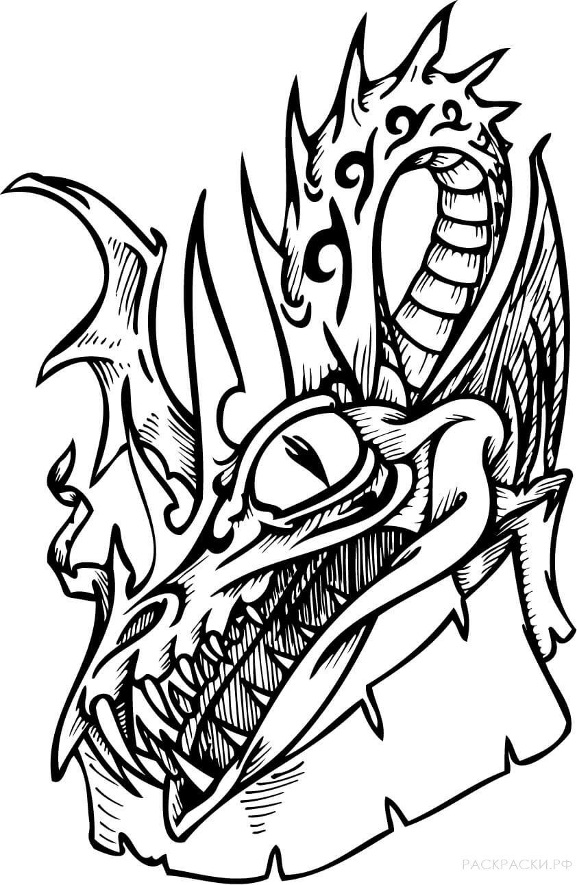 раскраска череп дракона раскраски рф распечатать