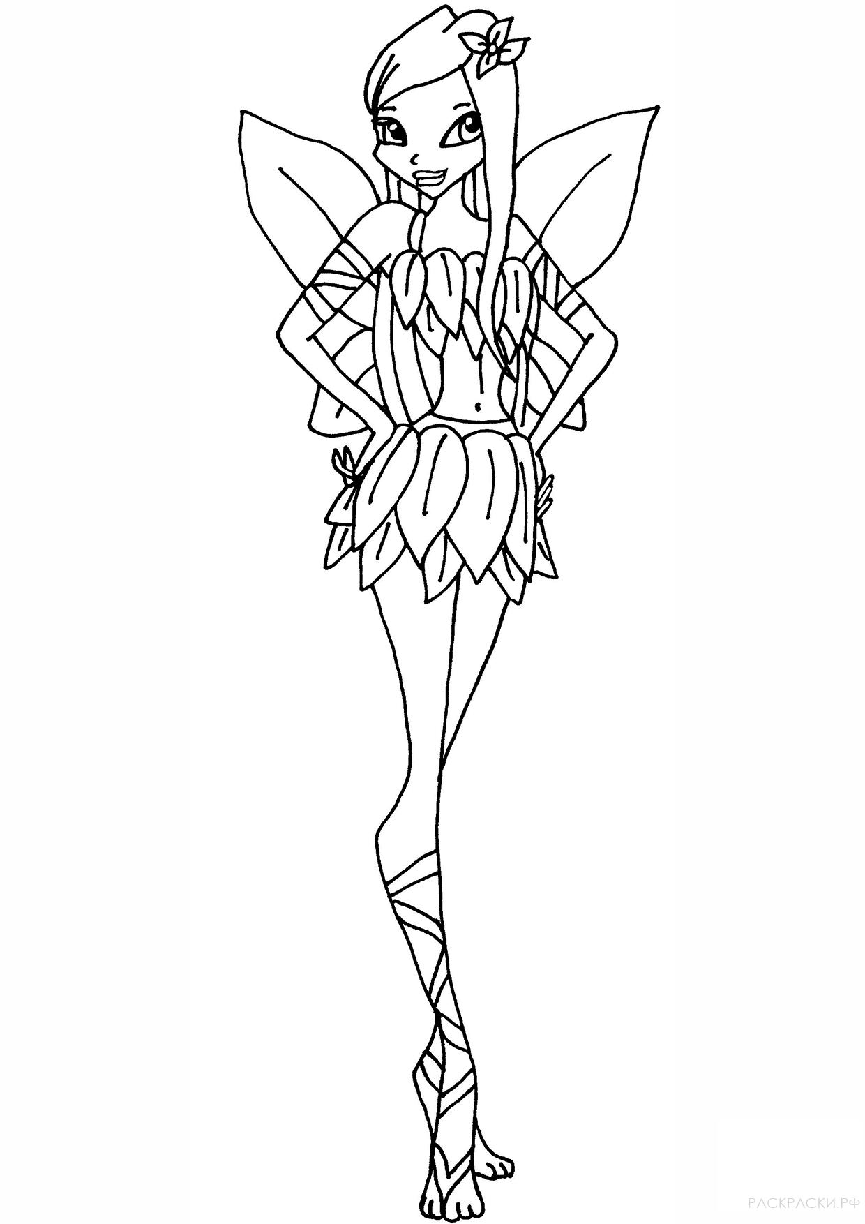раскраска фея рокси из клуба винкс раскраски рф
