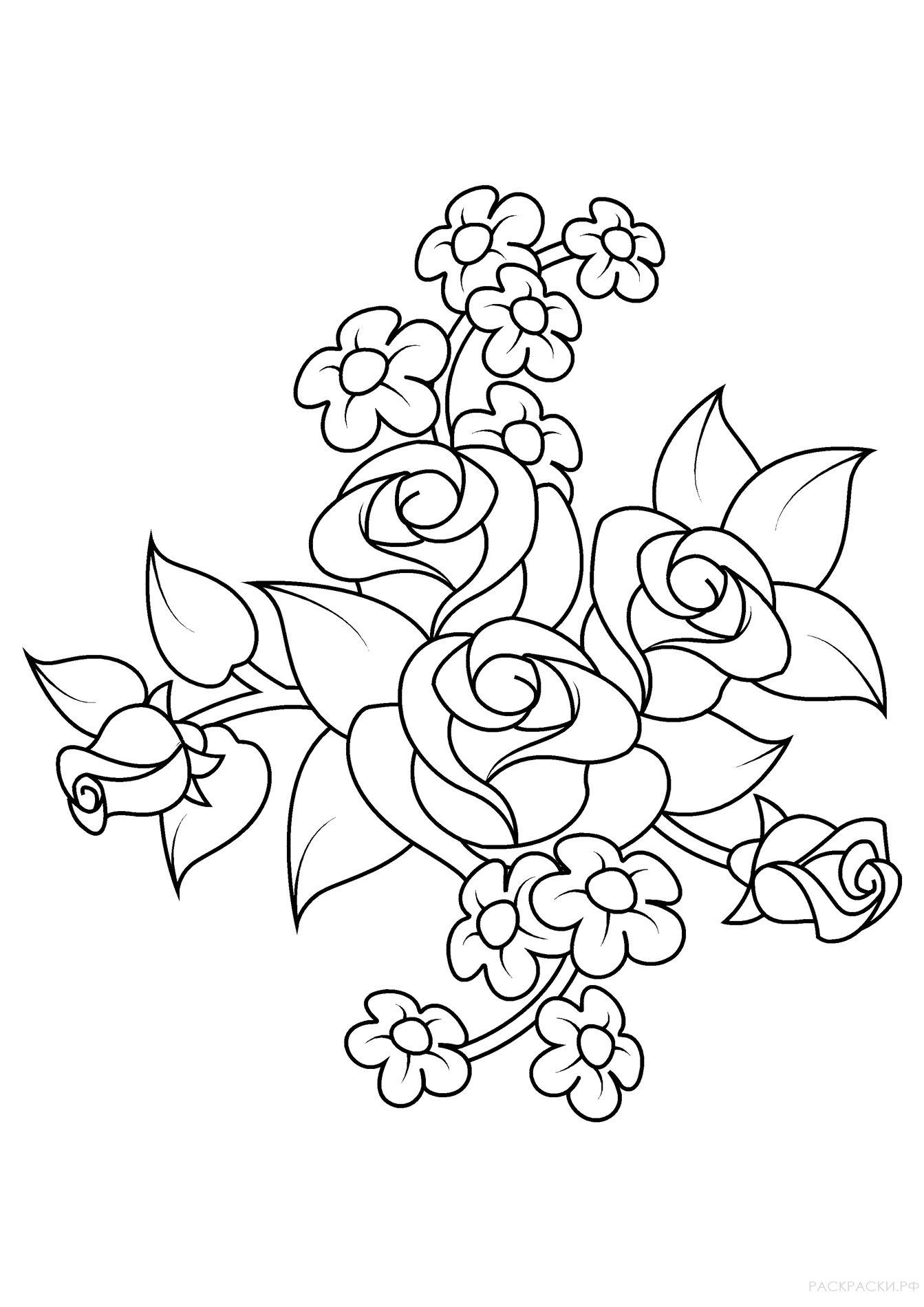 Раскраска Цветок розы » Раскраски.рф - распечатать ...