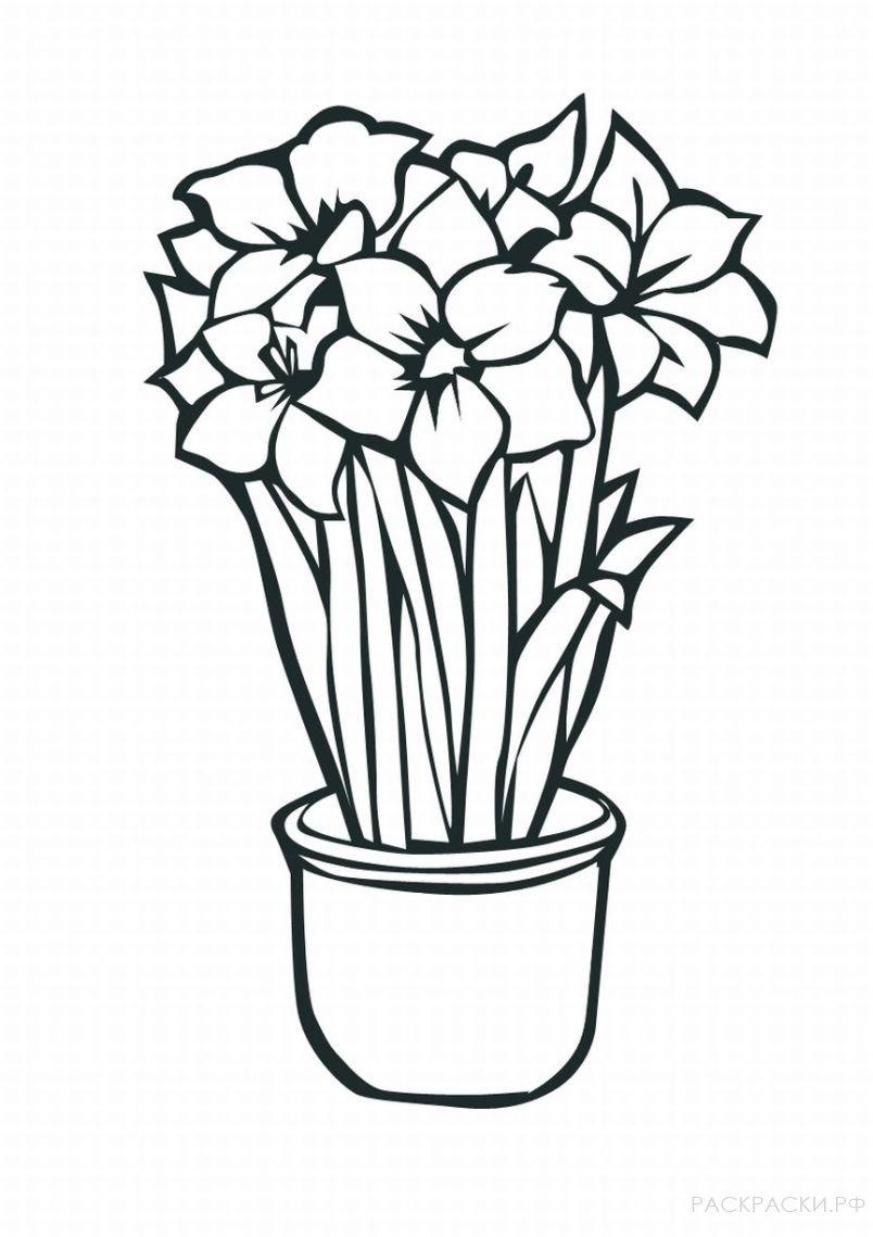 Раскраска Тюльпаны в горшке » Раскраски.рф - распечатать ...