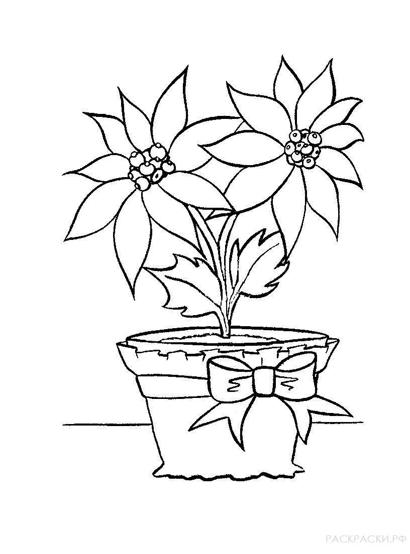 картинки как нарисовать цветок в горшке нем изображены три