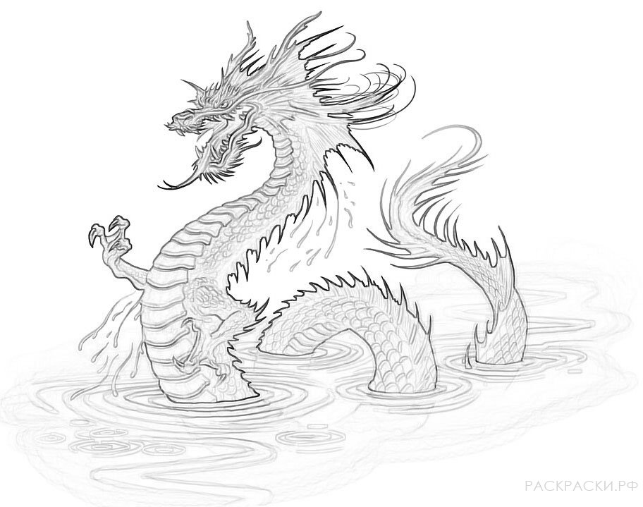 Раскраска морской дракон