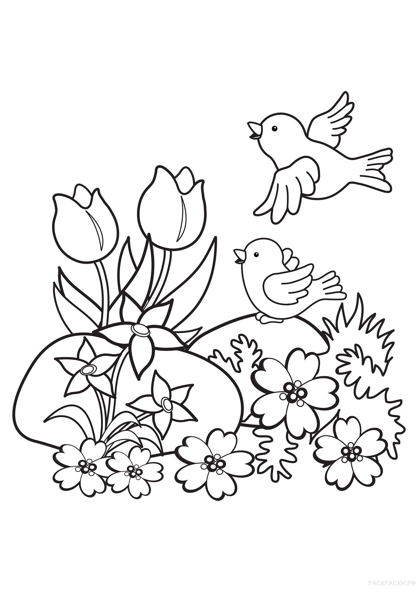 Раскраска Птицы и цветы