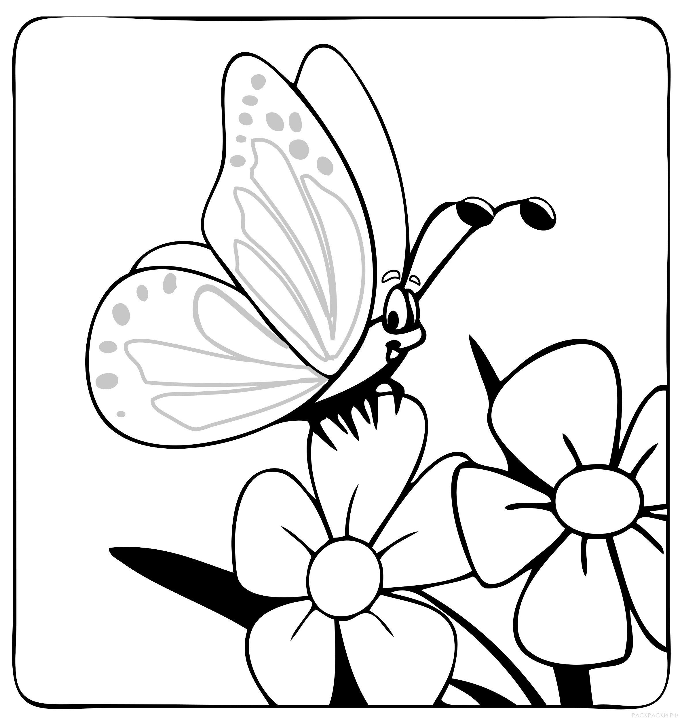 Раскраски для детей цветы с бабочками