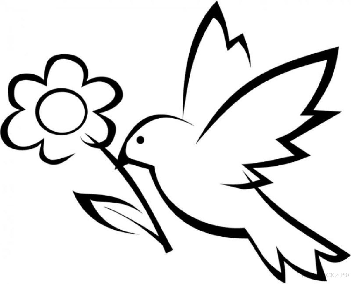 Раскраска Голубь с цветком
