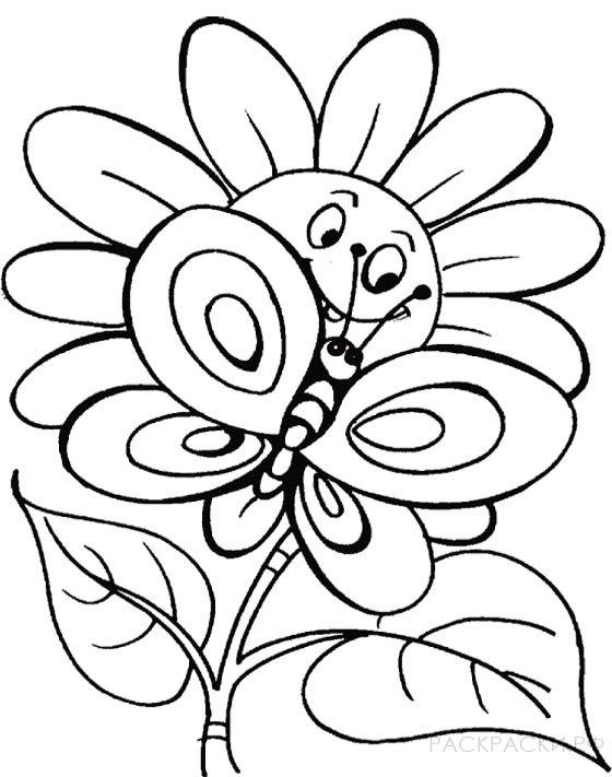 Раскраска Бабочка на цветке