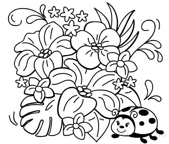 Раскраска Божья коровка в цветах